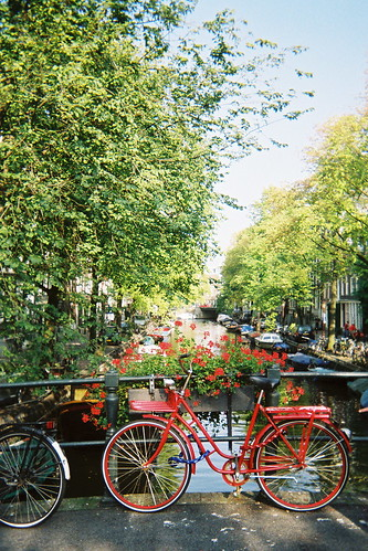 Amsterdam Red Bike Flowers