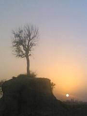 SUN (AL Nuaimi) Tags: al nuaimi dxb dubai uae mobile digital sun
