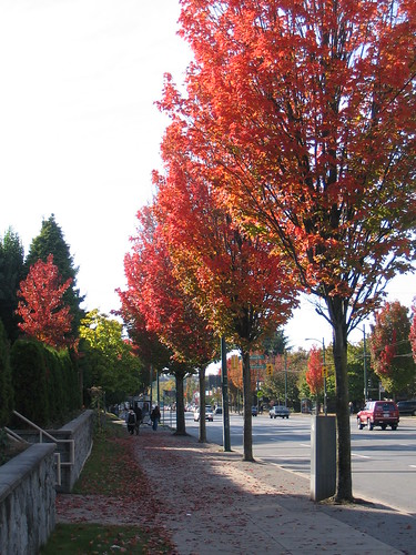 Autumn On Broadway, 2005