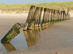 Palenrij strand Schoorl (capreolus) Tags: sea harbours saveme1 saveme2 saveme3 deleteme deleteme2 saveme4 deleteme3 deleteme4 saveme5 deleteme5 deleteme6 deleteme7 deleteme8 deleteme9 deleteme10 topv111