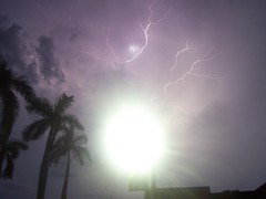Summer storm. (thinredjellies) Tags: summer sky lamp purple florida august palmtrees sarasota thunderstorm lightning newcollege palmcourt ncf