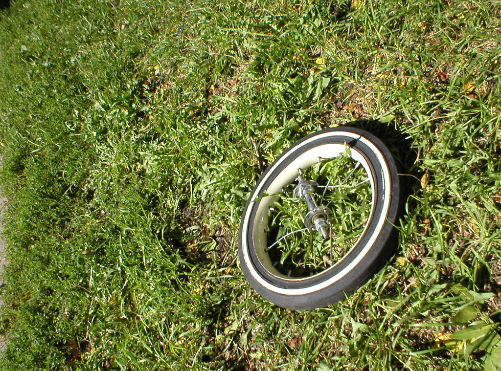 small wheel on grass