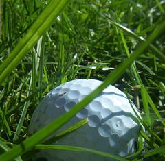 Nunca jugue Golf - I never played golf