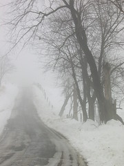 road in snow and fog