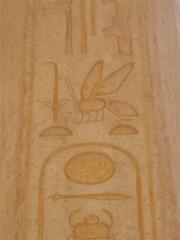 IMG_3515 (jaycee) Tags: egypt hieroglyphics cartouche