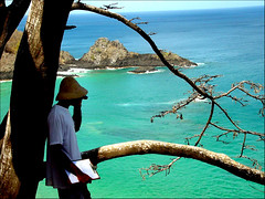 Love at first sight (*zillig) Tags: sea man tree beach nature brasil ilovenature 100v10f fernandodenoronha sancho