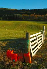 Rural elements (Wen Nag (aliasgrace)) Tags: wicket pasture norway rogaland