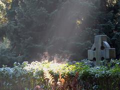 auringon voimaa (Marko_K) Tags: 15fav sun cemetery graveyard tag3 taggedout 510fav frost tag2 tag1 top20cemetery 50v5f