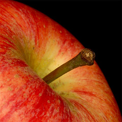 Square apple (Rune T) Tags: apple dof macro colors red yellow black closeup wow topv333 topf50