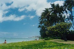 Blue on Green (Hayden Yates) Tags: kailua hawaii solitude sky ocean beach paradise
