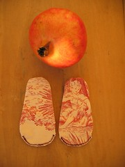 (n.15) frutos de outono