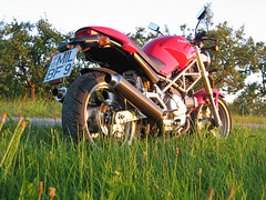 My Ducati Monster 600 (picknicker) Tags: monster topv111 germany geotagged motorbike motorcycle carbon ducati ixus400 motorrad ducatimonster geolat49874323 geolon9221419
