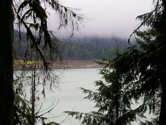 Lake, Trees and low clouds