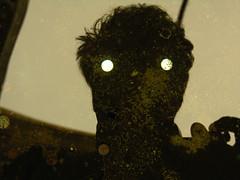 olhos-desejo (zenog) Tags: selfportrait eyes coins olhos wish desejo moedas