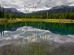 Pearl of nature (JoLoLog) Tags: canada reflection ilovenature pond alberta weeklysurvivor lorien kananaskiscountry forgetmenotpond weeklyblog28 i500