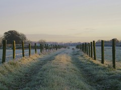 Saturday 7.30 Good morning (Harry Mijland) Tags: holland netherlands dutch landscape utrecht hiking nederland thenetherlands explore nl amelisweerd landschap rhijnauwen bunnik dearharry harrymijland