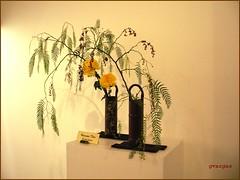 Ikebana ( Graa Vargas ) Tags: 2005  flower wonder all ikebana rights vargas chrysanthemum reserved graa graavargas 180700111010 2005graavargasallrightsreserved