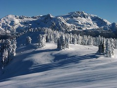 Skiing in Garibaldi Park (Alpine Climber) Tags: garibaldipark bc britishcolumbia canada coastmountainrange top20winter