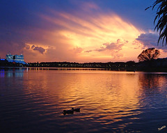 Florida Sunset (` Toshio ') Tags: trees sunset lake storm reflection topf25 silhouette topv111 tag3 taggedout clouds lights duck orlando tag2 tag1 florida watertower silhouettes ducks disney disneyworld topf stormclouds spacemountain lightrays toshio bluelist