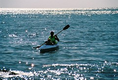 962583-R1-12-12A (ray.dio.active) Tags: 2005 beach kayak klepper hammonasset aquilus