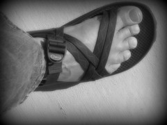 Chaco Sandals (Brave Heart) Tags: lighting feet foot photo toes soft flickr toe skin body picture lookdown strap vein veins bodyparts chaco straps braveheart myfeet 2007 softlighting mytoes humanskin chacosandals myveins bwfoot flickrtoes oursupershots footveins feetveins chacosandal flickrfeet flickrfoot chacostraps blackandwhitefoot