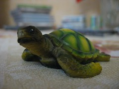 015 (eugene.solopov) Tags: canon turtles a610