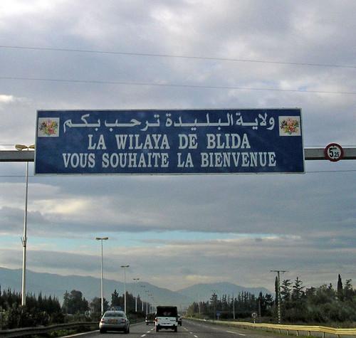 مدينة البليدة مدينة الورود . 99848734_96faf61340