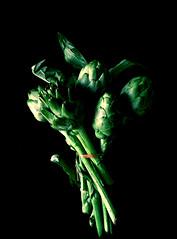 Bouquet (Sevgi Gürcan) Tags: green canon photography vegetable bouquet artichoke sevgi buket 2015 600d enginar gürcan sevgigurcan sevgigürcan