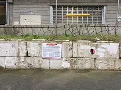 Prove, Revue (kozemchuk) Tags: graffiti revue dap prove