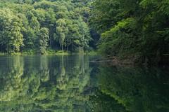 Lake Szmaragdowe (bertrandwaridel) Tags: park summer lake water forest july poland szczecin pologne 2015 jezioroszmaragdowe województwozachodniopomorskie parklesnyzdroje