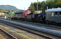 2015_Tapolca_0512 (emzepe) Tags: old railroad original white green station train private de tren beige hungary nap state diesel gare engine railway zug bahnhof loco restored series locomotive bahn ungarn treno chemin 022 fer 114 m40 kirnduls hungarian dsb gara livery 459 mv 408 2015 lokomotiv tapolca hongrie zld nyr napi fehr vonat sznek jlius nohab nosztalgia vast vasutas eredeti mozdony lloms krpt vastlloms bzs rendezvny dzelmozdony sznezs tapolcai ppos feljtott magnvast sorozat plyaszm muzelis