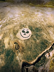 Day 216 of 365 - Stumpy Smile (sluggoman) Tags: smile stone hiking stump day216 365days smileproject 365daysproject smilestone httpbitlysmile2015