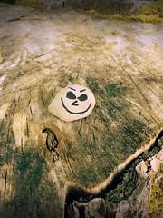 Day 216 of 365 - Stumpy Smile (sluggoman) Tags: smile stone hiking stump day216 365days smileproject 365daysproject smilestone httpbitlysmile2015
