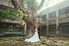 [prewedding] sunlight (pooldodo) Tags: wedding prewedding pooldodo taotzuchang bride groom light 破渡 婚紗