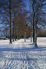 Snow path (Steenjep) Tags: vinter winter jylland danmark denmark sne snow herning sol sun sky himmel blå hvid skygge shadow reflex
