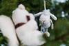 MyagkovS-200.jpg (stasmyagkov) Tags: парк животное день зима тропарево макро park troparevo moscow russia day winter macro animal