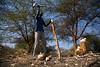 Abyei: Communities in Limbo (Albert Gonzalez Farran) Tags: abyei dinka misseryia southsudan sudan arabs business cattle climatechange deforestation environment environmentalimpact farmer farmings firewood naturalresources trees tribalconflict tribes agok southsudansudan