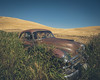 Languish (Pedalhead'71) Tags: wawawai washington abandoned car field palouse