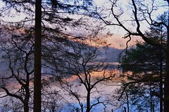 Loch Ard (coffeebucks) Tags: scotland winter kinlochard lochard forest trail hike tree