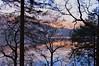 Loch Ard (coffeebucks) Tags: scotland winter kinlochard lochard forest trail hike tree