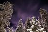 Stars and Snow (Miiksterr) Tags: canoneos rebelt5 lightroom 1855mm truckee california snow white trees tree green sky night dark purple light stars blue