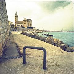 trani (thomasw.) Tags: trani apulien perugia salento italia italien italy city travel travelpics europe europa analog cross crossed mamiya 120 mf