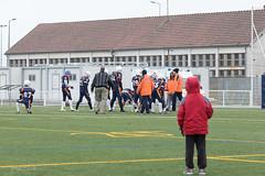 4D3A2915 (marcwalter1501) Tags: minotaure tigres strasbourg footballaméricain football sportdéquipe sport exterieur match nancy