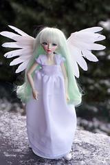 White Angel (Steffi♥Dollies) Tags: bjd mnf minifee celine white angel dress lace wings feather