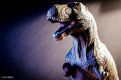 T - Rex (BGDL) Tags: lightroomcc nikond7000 bgdl niftyfifty afsnikkor50mm118g toy trex 7daysofshooting week27 abooktitle focusfriday