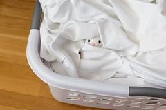 Hiding in the Laundry Basket (Arielle.Nadel) Tags: miarabbit bunny rabbit cute toyphotography hiding laundry basket ayearwithmiarabbit
