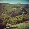 Hillside with sheep (sonofwalrus) Tags: holga film lomo lomography scan turkey middleeast behramkale hills sheep hillside landscape rocks