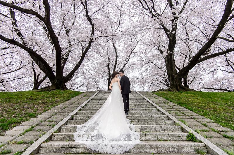 日本婚紗,京都婚紗,櫻花婚紗,新祕藝紋,cheri wedding,旋轉木馬手工婚紗,婚攝,cheri婚紗包套,海外婚紗,DSC_0004