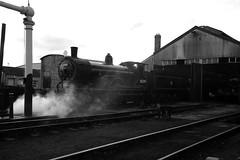 GWS 34205bw (kgvuk) Tags: greyhound trains locomotive railways 440 didcot steamlocomotive gws didcotrailwaycentre t9 30120 30289 greatwesternsociety didcotengineshed 81e