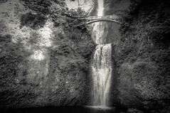 Multnomah Beauty - Portland Multnomah Falls, Oregon (, ) (dlau Photography) Tags: park travel bridge vacation blackandwhite white black nature water monochrome weather oregon portland afternoon outdoor columbia tourist falls national gorge benson visitor soe magnificent multnomah attraction    nikonflickraward flickrunitedwinner